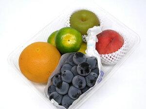 こだわり フルーツ おまかせ