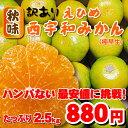 880円で美味しいみかんと言えば!秋味・えひめ西宇和みかん!...