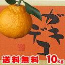 10kg送料無料2.580円⇒でありえない最安値に挑戦!デコ...