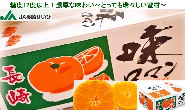 長崎みかん「味ロマン」約10kg 優品 Sサイズ 贈答用【北海道・九州地区は別途500円】