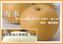 【送料無料】長野産 南水梨 8玉〜12玉 秀品 約5キロ 贈答用【晩生最強の高糖度 和梨】
