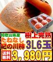 【無添加】 完熟梅干 減塩[5kg]《送料無料!》