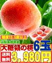 【7月初旬より発送開始】 桃 もも モモ 6玉入り 伝説の大...