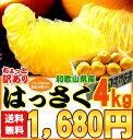 【2月上旬より順次出荷】【4kg入り送料無料でお届け!】紀州田辺産ちょっと訳有り[はっさく4kg]