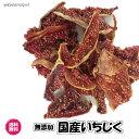 (無添加 国産 いちじく 30g×2P)ドライフルーツ 砂糖不使用 お試し イチジク 全国 送料無料