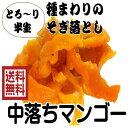 「中落ち 半生 ドライマンゴー」500gパック マンゴー ドライフルーツ(中落マンゴー500g)セブ産 全国送料無料