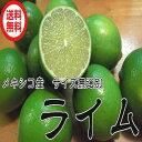 【送料無料】(通常品 ライム 5kg 40から50個)サイズ込み 青果
