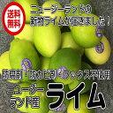 全国送料無料(レターパック ニュージーランド ライム 1kg)約8個〜18個 ポストハーベスト農薬不使用 レターパック