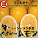 (メイヤーレモン NZ産 3kg クール便)メイヤー マイヤー 防腐剤・ワックス不使用 レモン 防ばい剤不使用レモン ニュージーランド 送料無料 青果 ランキングお取り寄せ