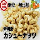 【送料無料】無塩 (カシューナッツ 業務用 1kg)/ナッツ 木の実 ドライロースト