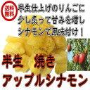 半生 焼きアップルシナモン 業務用 1kg ドライフルーツ ドライアップル りんご 焼きりんご ドライりんご(焼きりんご 1kg) 全国送料無料