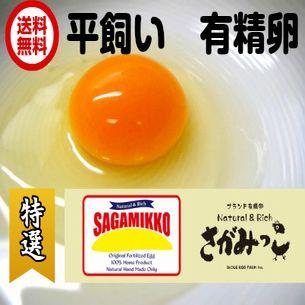 【送料無料】平飼いブランド有精卵 さがみっこ 1...の商品画像