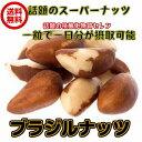 (ブラジルナッツ 240g/80g×3パック)非加熱 ブラジル産 無塩・無添加 ナッツ 全国送料無料