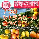 愛媛産 7種の柑橘類ピール食べくらべ ドライフルーツ 国産 ピール(ピール7種セット) 全国送料無料