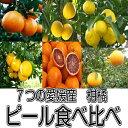 【送料無料】7種から選べる4種1200円 国産ピール 愛媛産 7種の柑橘類ドライフルーツ 国産ピール
