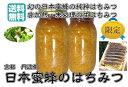送料無料(京都丹波産日本蜜蜂の純粋蜂蜜100% 1kg)業務用 無添加 非加熱 国産 はちみつ