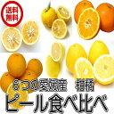 愛媛産 6種の柑橘類ピール食べくらべ ドライフルーツ 国産 ピール(ピール6種セット) 全国送料無料