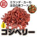 無農薬栽培(ゴジベリー 500g)クコの実 ドライフルーツ ...