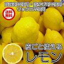 皮ごと安全(クール便 皮ごと使えるレモン 5kg 40から55個)防腐剤・ワックス不使用