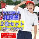 【10日はエントリーでP 10倍以上】【今だけ2000円ポッキリ】【サイズが選べる2枚組】
