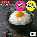 熊本県産白米10kg(5kg×2)ヒノヒカリ/お米/熊本県産【お米 10kg 送料無料/こめたつ