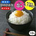 ★無洗米★熊本県ヒノヒカリ白米10kg(5kg×2袋) /お米/熊本県産ひのひかり