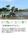 【ふるさと納税】B−092.佐賀県産米 特A評価夢しずく【無洗米】