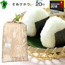 熊本県産キヌヒカリ玄米20kg又は白米18kg米/お米/コメ30年