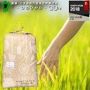 自然農法米 熊本県産ひのひかり 30kg 小分け対応/お米/熊本県産ヒノヒカリ