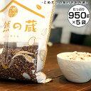 もち麦 国産 たっぷり もち麦 皮つき送料無料 ダイエットもちむぎ 紫もち麦
