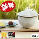 新米 予約【令和元年産新米】熊本県産ミルキークイーン玄米20...