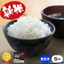 新米★無洗米★熊本県産キヌヒカリ5kg米/お米/コメ30年