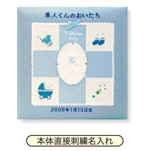 ポイント アルバム ランキング ナカバヤシ フエルアルバム ウェルカムベビー