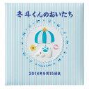 【刺繍名入れ代込み】【送料無料】ナカバヤシ フエルアルバム 誕生用トイモービル ア-LB-300-B