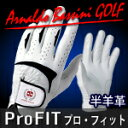 [Arnaldo Bassini 】★ Pro Fit ★ golf glove half sheep leather specifications right-handed person / left hand use]