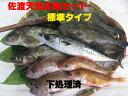 【送料無料 】 佐渡天然お魚セット 標準タイプ[下処理済] \3480 いろんなお魚はいってます!!