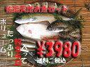 全国送料無料 【送料無料】 ボリュームタップリ佐渡天然お魚セット約5キロ入って¥3980 とにかくいろんな魚が入ってます!!
