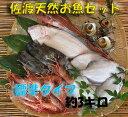 全国送料無料 【送料無料】 佐渡天然お魚セット約三キロ入って¥2980 とにかくいろんな魚が入ってます!!