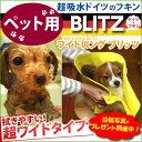 Pet-blitzm