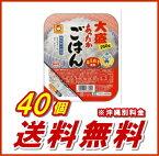【東洋水産】(マルちゃん) あったかごはん 大盛 250g 40個(10個入×4ケース分)【送料無料】【smtb-KD】