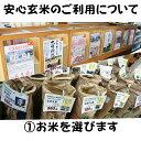 島根県 宍道湖産 活きしじみ (砂抜き済み) 2Lサイズ 3Kg