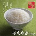 お米 コメ はえぬき 10kg 無洗米 精米 送料無料 山形県産 令和3年産 5kg×2袋 2kg×5袋 新米