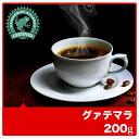 業務用・卸価格にてお届け◆レインフォレスト・アライアンス認証 グアテマラ【200g】◇コーヒー/コーヒー豆