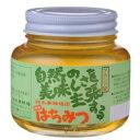 鈴木養蜂場 はちみつ アカシア(AK) 450g 2個セット