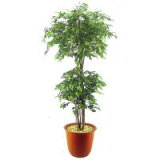 【代引不可】【】夢とやすらぎの人工樹木 ベンジャミントロピカル (150cm) ABT15-360
