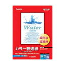 キヤノン カラー普通紙 100枚 LC-301 B4 (100マイイリ)