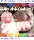 樂天商城 - 猫用 ネイルキャップ(ライトピンク) Sサイズ【代引不可】
