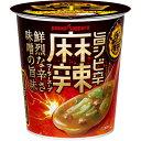 ポッカサッポロ 辛王 旨シビ辛麻辣スープカップ 19.8g×24個入り (4ケース) (MS)