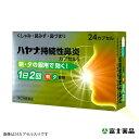 【第(2)類医薬品】ハヤナ持続性鼻炎カプセルS(48カプセル)
