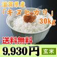 【送料無料】 【27年産】「キヌヒカリ」滋賀県産 玄米 30kg【RCP】